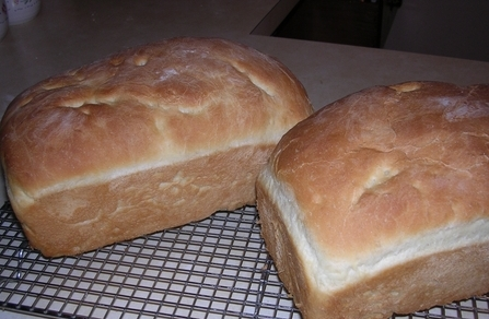Gina's Homemade bread